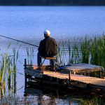 THE CASE FOR GOING FISHING