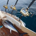 HELP WITH IGFA FISHING RECORD REQUIREMENTS