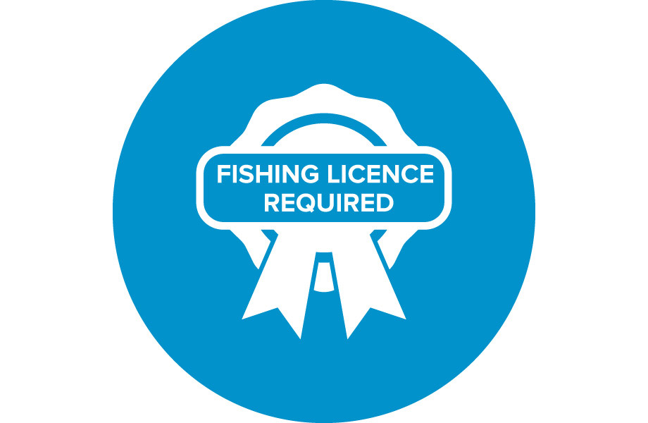 fishing licence required