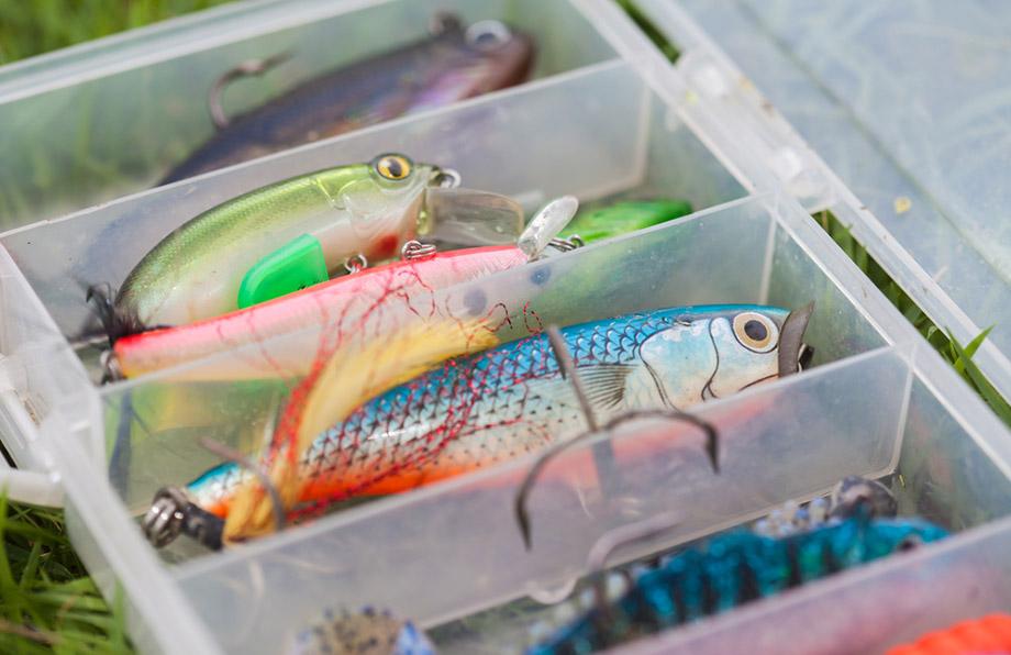 barramundi fishing lures
