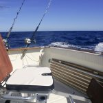 OFFSHORE FISHING FEATURE NORTH NORTHWEST CAIRNS