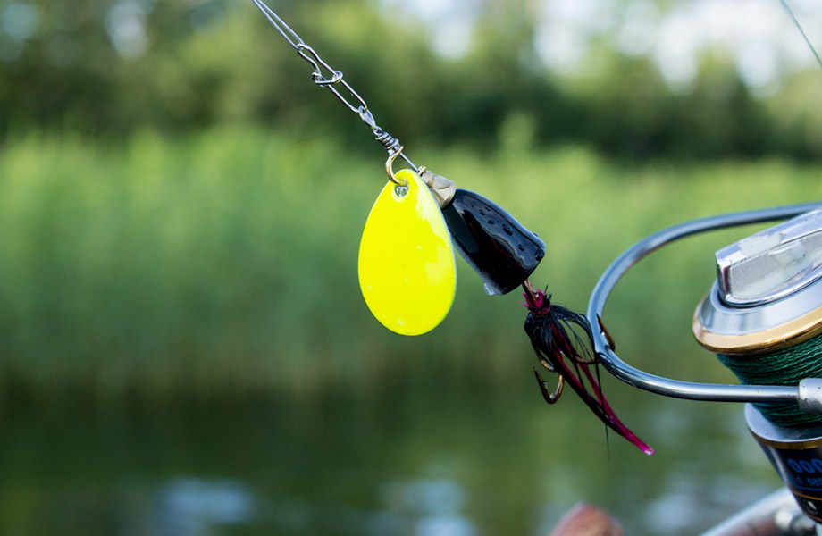 fishing knot, line and lure