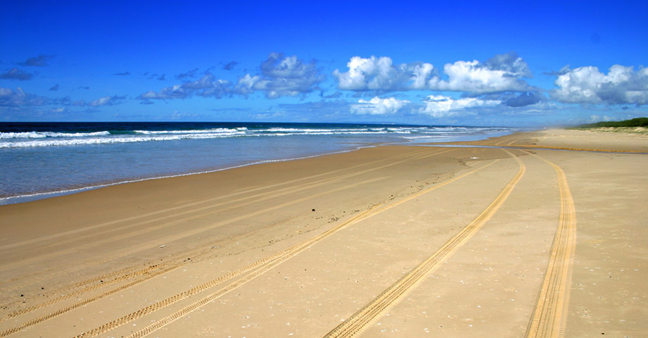 4WD tracks on beach