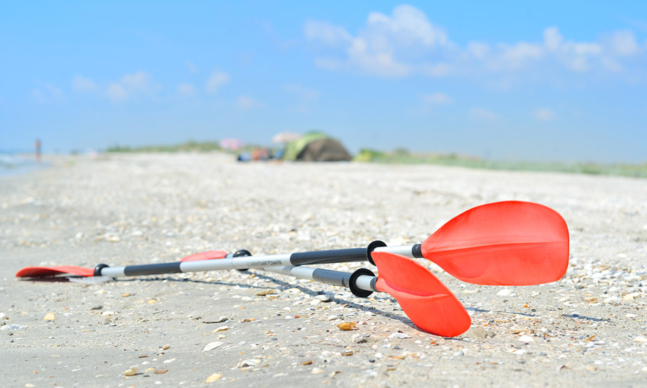 kayak paddle on beach