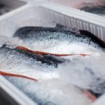 KEEPING ICE LONGER TO PRESERVE CAUGHT FISH