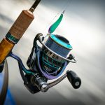 THE DIFFERENCE BETWEEN SALTWATER AND FRESHWATER FISHING REELS