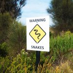 SNAKE BITES: WHAT TO DO AND WHAT NOT TO DO