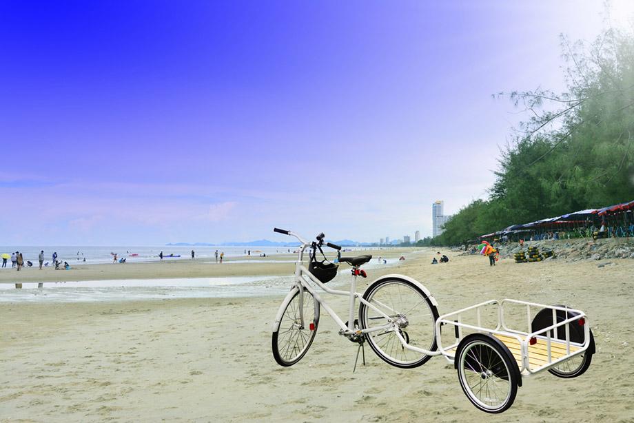 Bicycle Trailer Fishing