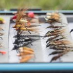HOW TO CHOOSE A FLY PATTERN
