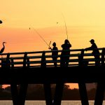 THE BASICS OF JETTY FISHING