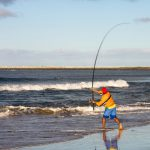 SHARK FISHING QUEENSLAND BEACHES: THE BASICS