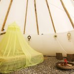QUICK GUIDE TO BUYING A TIPI FOR PURPOSE
