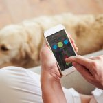 USEFUL APPS FOR DOG OWNERS