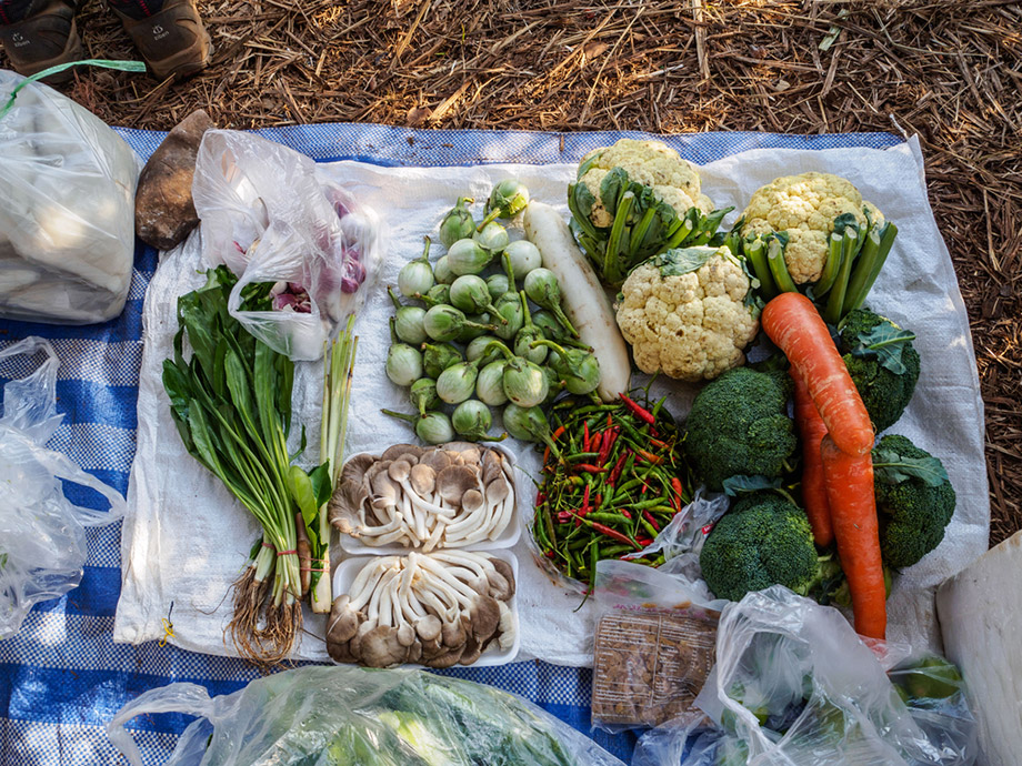 Vegetables For Camping