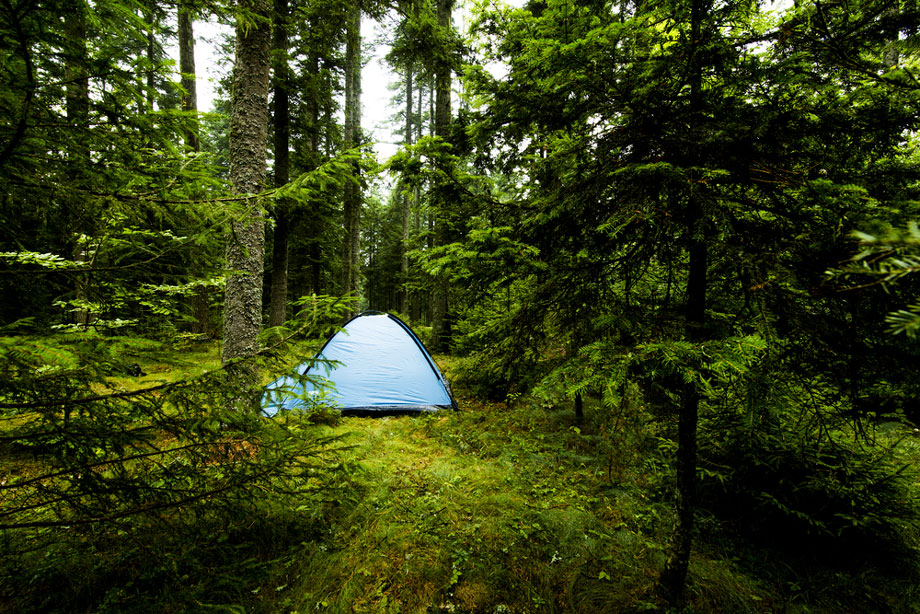 Camping Off The Beaten Path