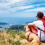 THE PROS AND CONS OF TAKING YOUR DOG HIKING
