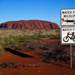 HITTING THE MOUNTAIN BIKE TRAILS AROUND ALICE SPRINGS