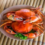 HOW TO COOK MUD CRABS