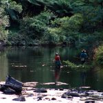 THE YARRA RIVER: MELBOURNE'S HIDDEN FISHING MECCA