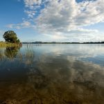 THE ALLURE OF COPETON DAM FOR COD FISHOS