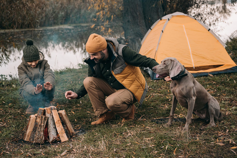 Man And Woman Camping With A Dog