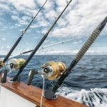 FEATURES TO CONSIDER WHEN BUYING A SALTWATER FISHING ROD
