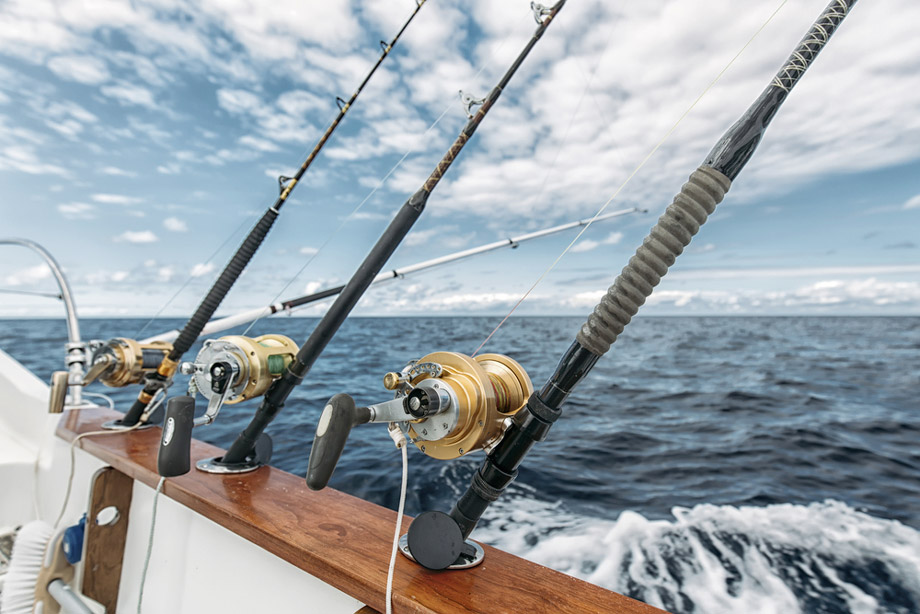 Fishing Rods In Holders On Boat