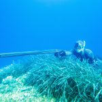 5 CRUCIAL TIPS FOR SAFE SPEARFISHING