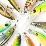 FISHING 101: HOW TO USE JERKBAIT LURES