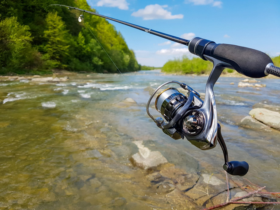 Light Spinning Reel On Rod