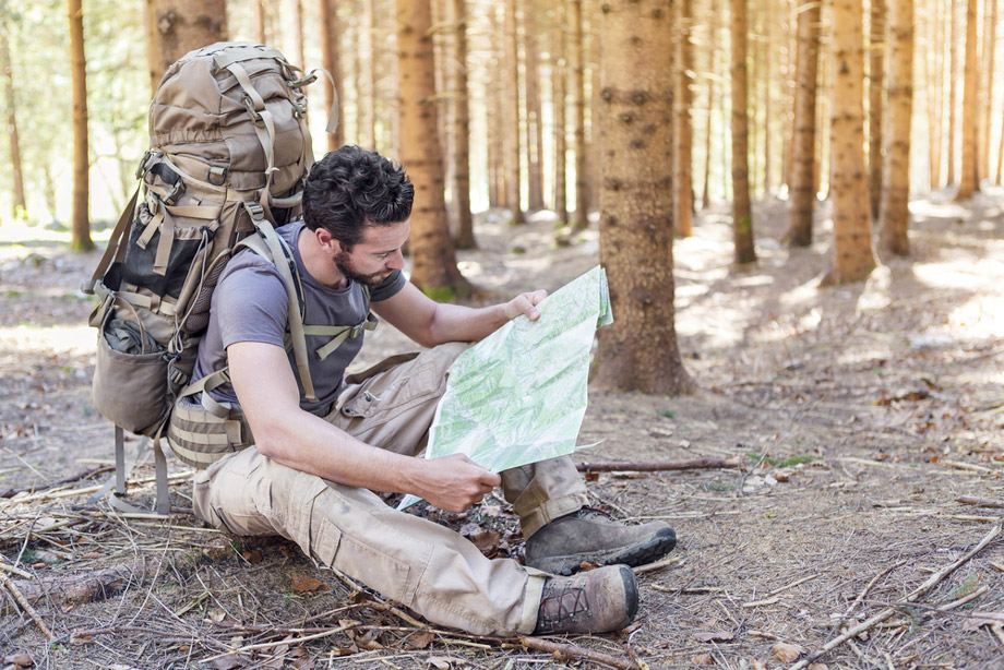 Man Looks At Map In Wood