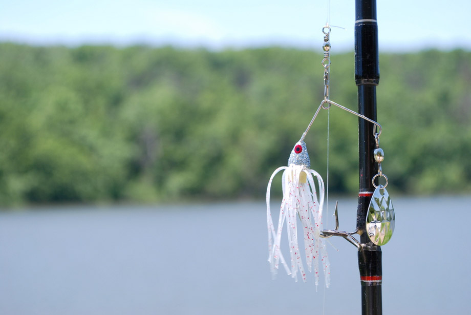 Spinnerbait Hanging On Rod